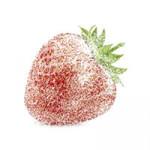 zamrznuta jagoda